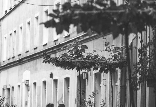 wesele ślub wrocław, organizacja wesela